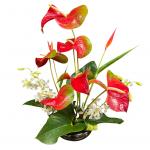 Kalapana Spring Bouquet