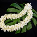 Double Strung Dendrobium Orchid Lei